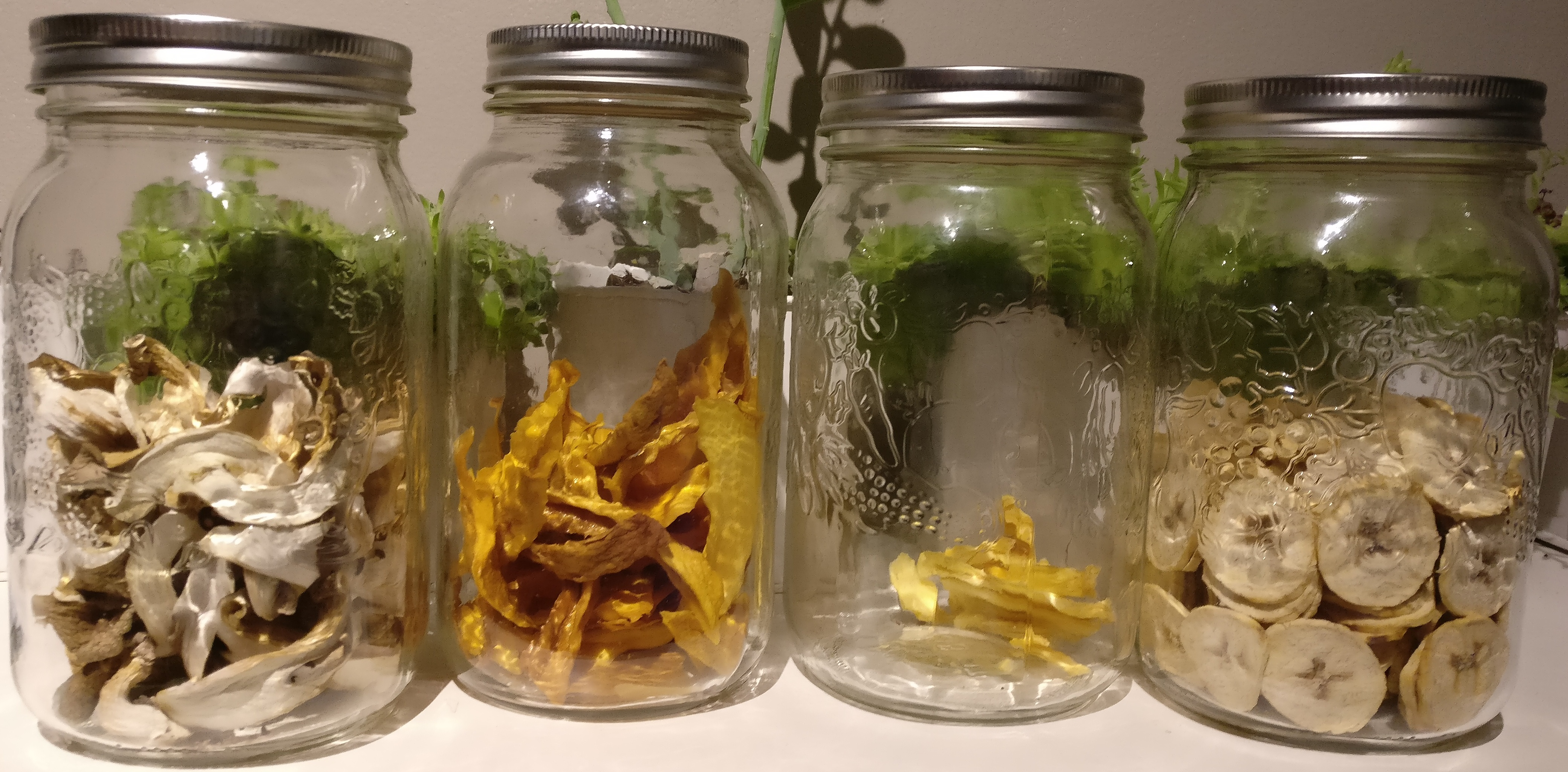 All stored in mason jars